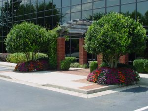 Entrance with Trees and Flowers