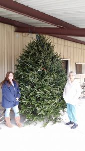 Women with Large Christmas Tree